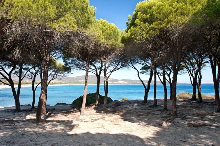 Budoni beaches and surroundings sardinia residence sa for Residence budoni